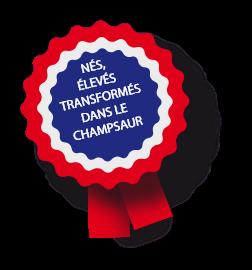 NÉS, ÉLEVÉS TRANSFORMÉS DANS LE CHAMPSAUR
